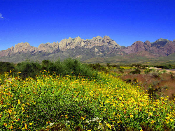 Photograph - View From Dripping Springs Rd by Kurt Van Wagner