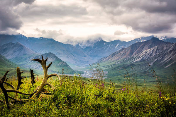 Photograph - View From Eielson by Claudia Abbott