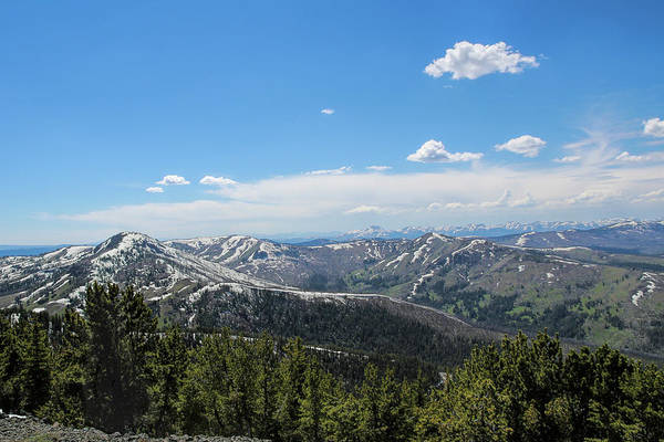 Photograph - View From Mount Washburn by Jemmy Archer