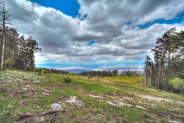Photograph - View From The Sandia Mountains by David Patterson