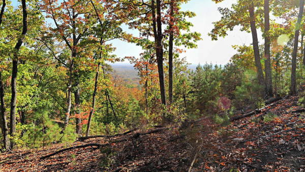 Photograph - View From The Top Of Brown's Mountain Trail, Kings Mountain Stat by Simply Photos