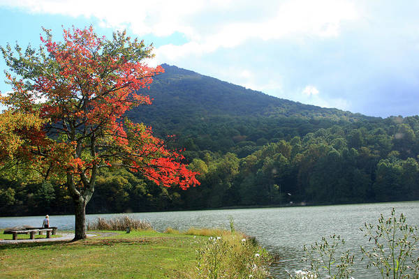 Photograph - View Of Abbott Lake And Sharp Top In Autumn by Emanuel Tanjala