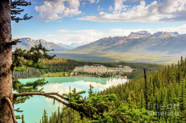 Wall Art - Photograph - View Of Lake Louise From Above by Viktor Birkus