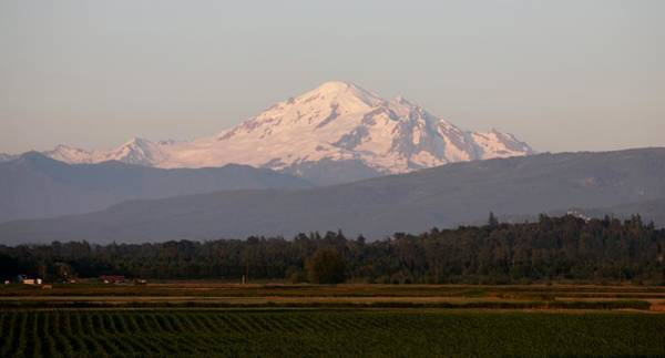 Photograph - View Of Mt. Baker - 3 by Christy Pooschke