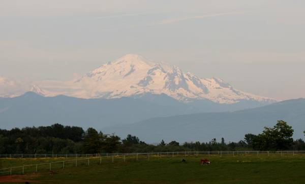 Photograph - View Of Mt. Baker  by Christy Pooschke