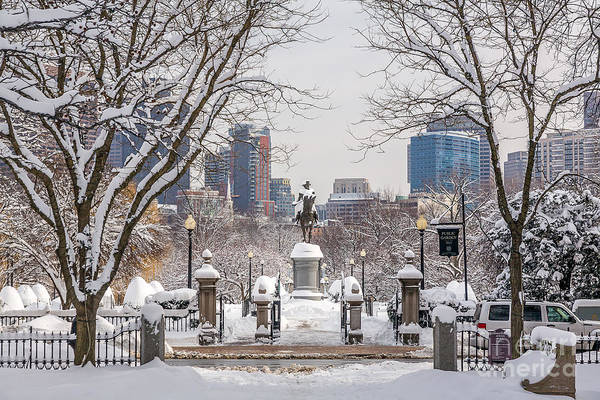 Wall Art - Photograph - View Of The Boston Public Garden by Susan Cole Kelly