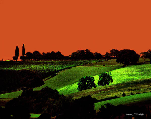 View Of Tuscany Art Print