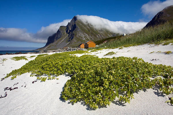 Photograph - Vikten Beach With Green Grass And Clouds by Aivar Mikko