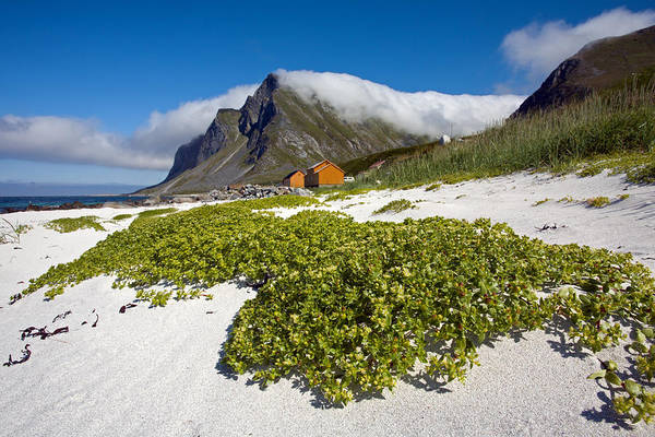 Photograph - Vikten Beach With Green Grass, Mountains And Clouds by Aivar Mikko