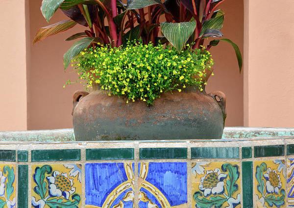 Photograph - Villa Marianna Flower Pot by Bruce Gourley