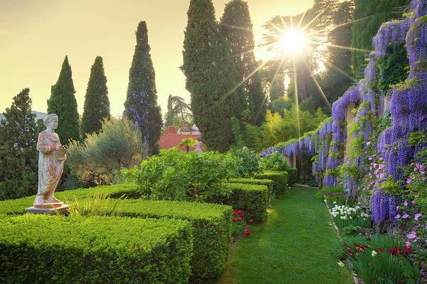 Photograph - Villa Pergola by Giovanni Allievi