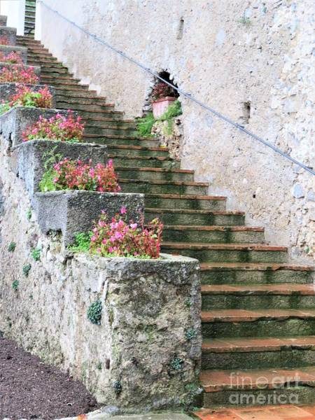 Photograph - Villa Rufolo Ravello by Laurie Morgan
