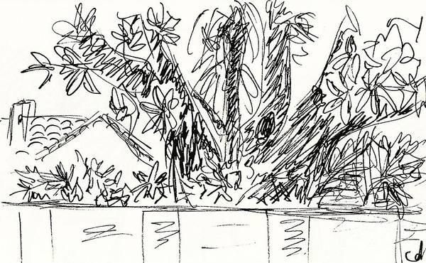 Drawing - Villa Santa Teresa In Torremolinos by Chani Demuijlder
