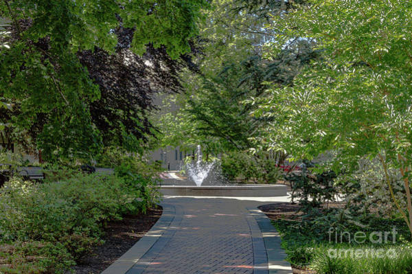 Photograph - Villanova Fountain by William Norton