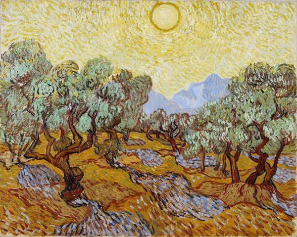 Wall Art - Painting - Vincent Van Gogh - Olive Grove, Pink Sky by Celestial Images