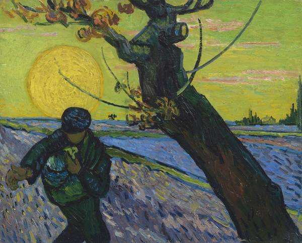Painting - Vincent Van Gogh, The Sower by Artistic Panda