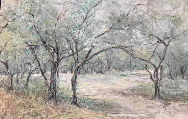 Vincents Olive Trees 2 Art Print
