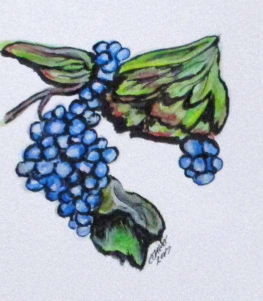 Painting - Vine Grapes by Clyde J Kell