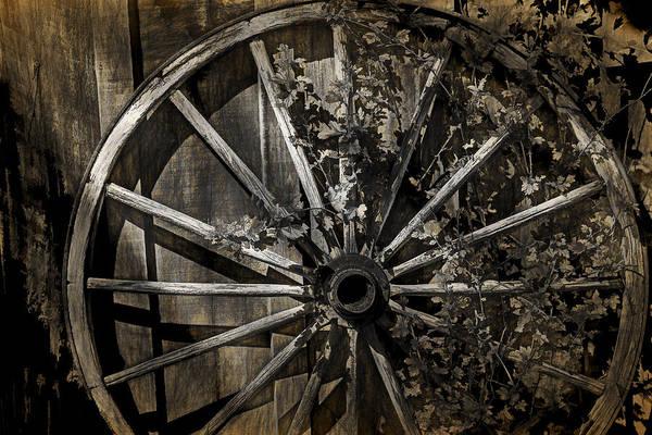 Photograph - Vine Overgrown Wagon Wheel by Randall Nyhof