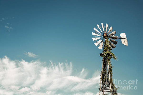 Photograph - Vines Growing Up A Windmill In Canada by Bryan Mullennix