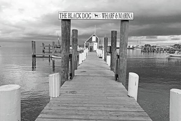 Photograph - Vineyard Haven Black Dog Wharf Marina Martha's Vineyard Cape Cod Black And White by Toby McGuire
