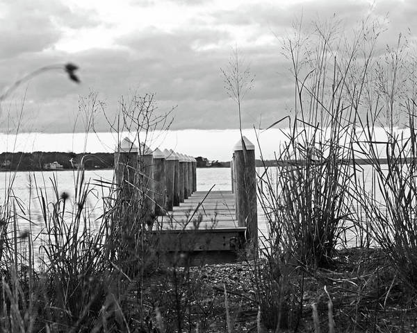 Photograph - Vineyard Haven Pier Cape Cod Martha's Vineyard At Sunset Black And White by Toby McGuire