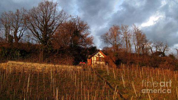 Photograph - Vineyard House  by Susanne Van Hulst