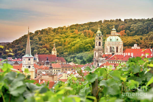 Wall Art - Photograph - Vineyard Of Prague by Delphimages Photo Creations