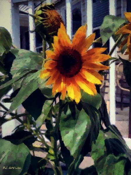 Painting - Vineyard Sunflower by RC DeWinter