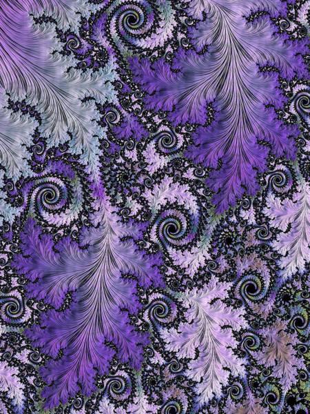 Digital Art - Vineyard by Susan Maxwell Schmidt