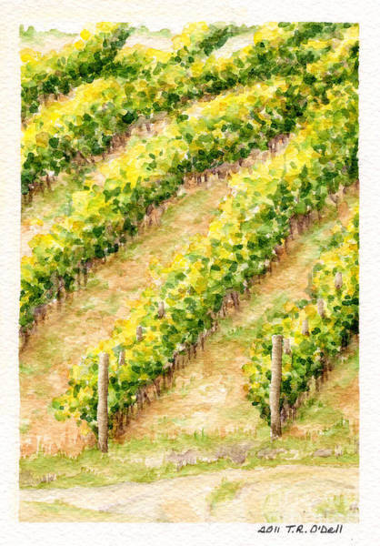 Vino Painting - Vineyard6 Small by TR O'Dell