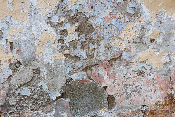 Crumbling Photograph - Vintage Abstract II by Elena Elisseeva