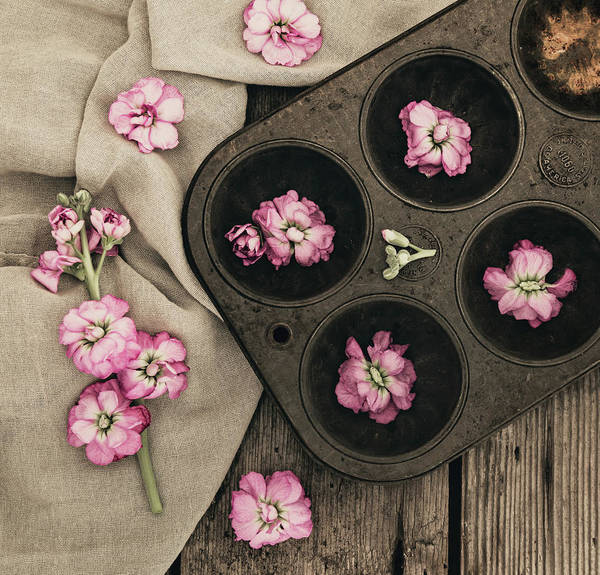 Photograph - Baking With A Twist by Kim Hojnacki