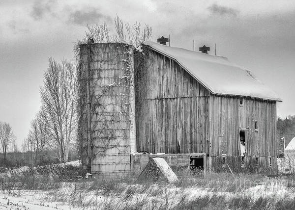 Photograph - Vintage Barn by Rod Best
