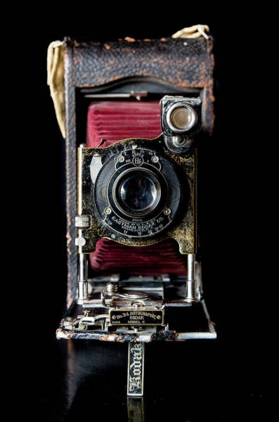 Photograph - Vintage Bellows Camera by Adam Reinhart