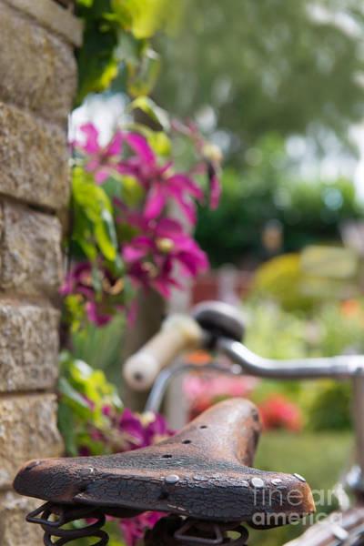 Flowers Bike Wall Art - Photograph - Vintage Bicycle by Amanda Elwell