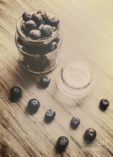 Bilberry Photograph - Vintage Blueberries by Jorgo Photography - Wall Art Gallery