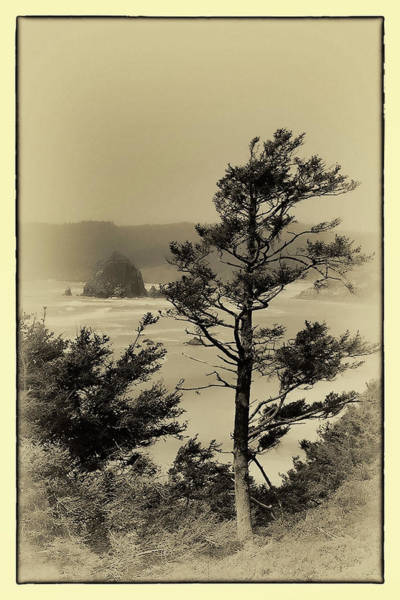 Photograph - Vintage Cannon Beach by David Patterson