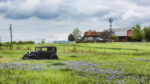 Wall Art - Photograph - Vintage Car And Bluebonnets by Stephen Stookey