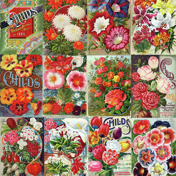 Vintage Childs Nursery Flower Seed Packets Mosaic  Art Print