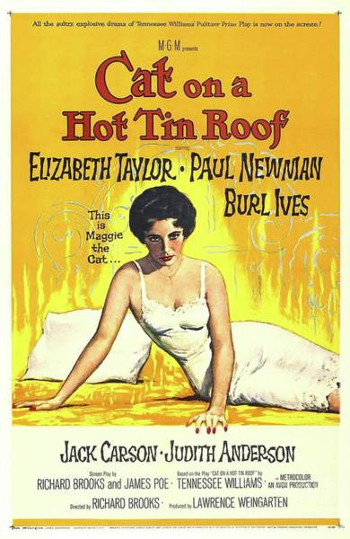 Tin Roof Wall Art - Painting - Vintage Classic Movie Posters, Cat On A Hot Tin Roof by Esoterica Art Agency