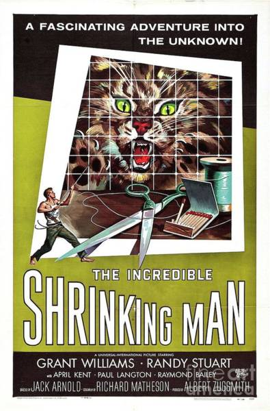 Incredible Wall Art - Painting - Vintage Classic Movie Posters, The Incredible Shrinking Man by Esoterica Art Agency