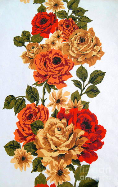 Photograph - Vintage Climbing Roses by Brenda Kean