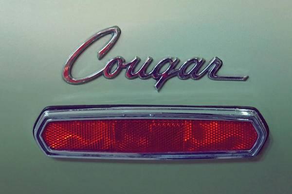 Photograph - Vintage Cougar Emblem by Patricia Strand
