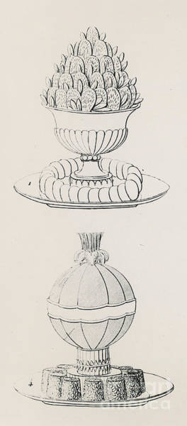 Pineapples Drawing - Vintage Designs By Antoine Careme by Marie Antoine Careme