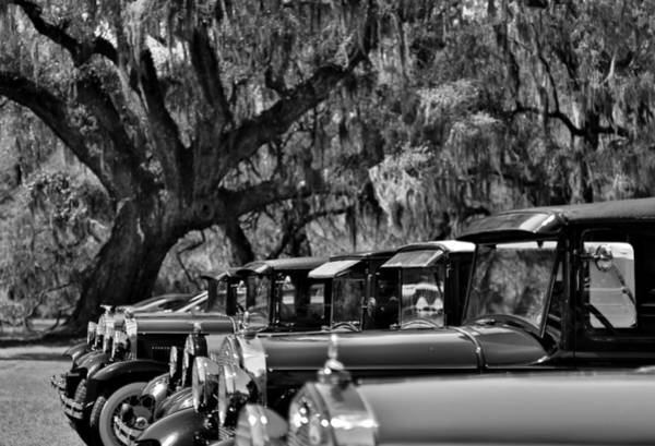 Photograph - Vintage Ford Line-up At Magnolia Plantation - Charleston Sc by Donnie Whitaker
