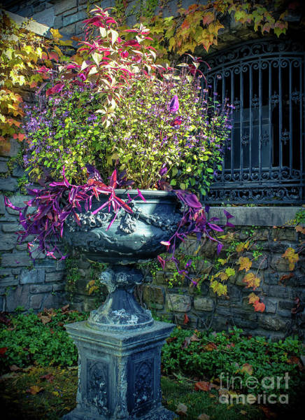 Wall Art - Photograph - Vintage Garden Urn by Colleen Kammerer