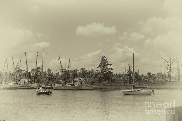 Photograph - Vintage Georgetown Sc by Dale Powell