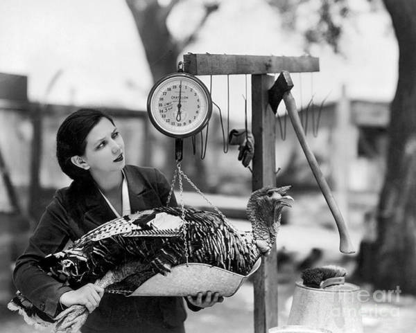 Thanksgiving Photograph - Vintage Holiday Card   Woman Weighing A Turkey Ahead Of The Holidays by American School