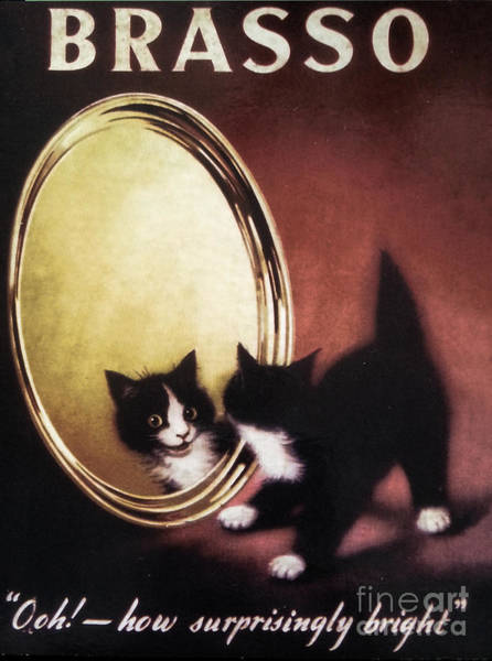 Chat Painting - Vintage Kitty Cat by Mindy Sommers